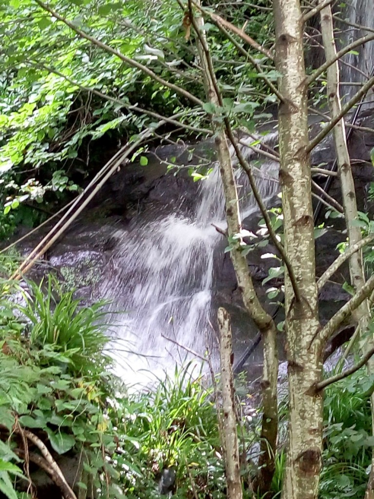 Во дворе у Нази  есть природный водопад
