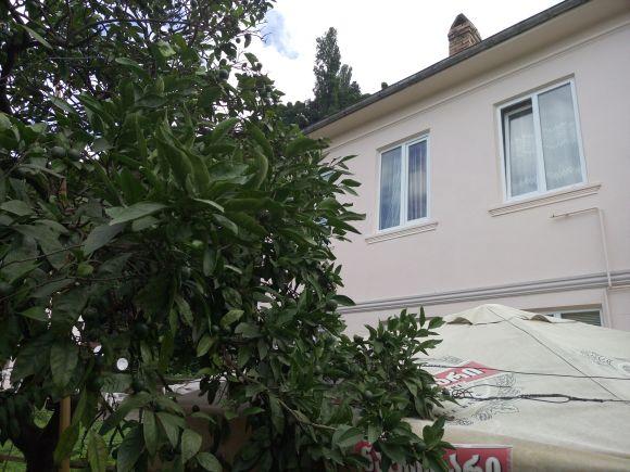 Дом Нази и  мандарин